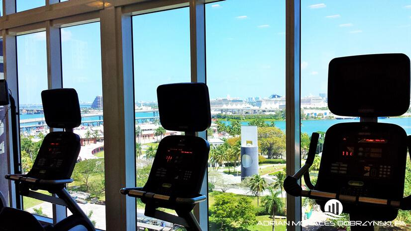 50 Biscayne treadmills overlooking the park and the bay